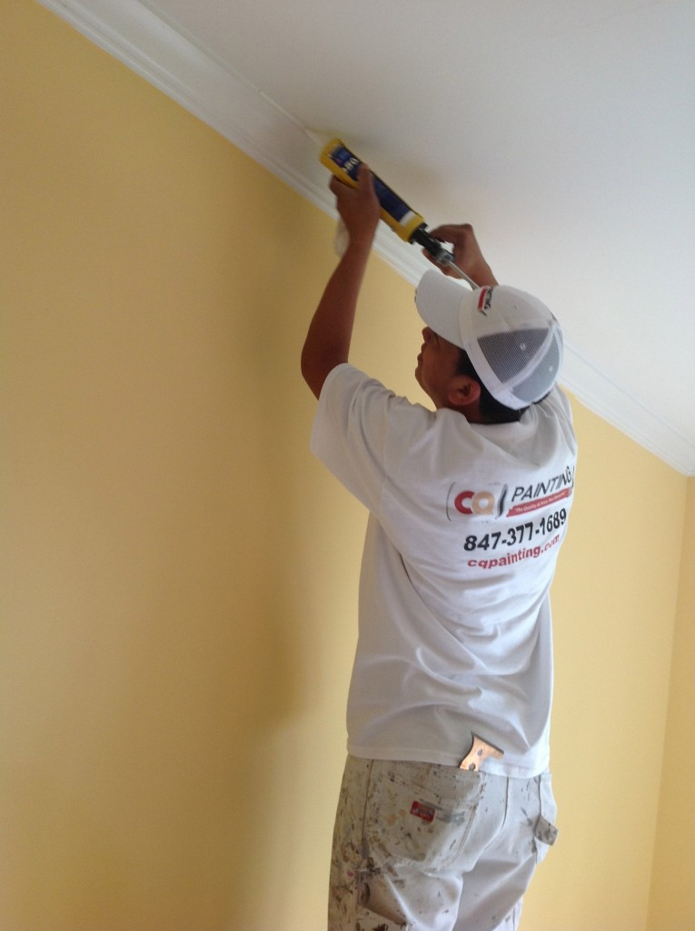 Our commercial painting contractor offers high quality painting services